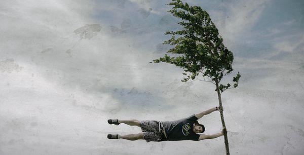 Image result for vant puternic imagini