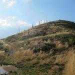 151 150x150 GALERIE FOTO Imagini apocaliptice din Făgăraş. Cel mai înalt lanţ muntos din România a căzut pradă tăietorilor de lemne