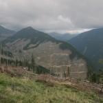 162 150x150 GALERIE FOTO Imagini apocaliptice din Făgăraş. Cel mai înalt lanţ muntos din România a căzut pradă tăietorilor de lemne