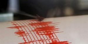 Cutremur de 3,5 grade pe scara Richter în zona Vrancea