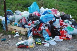 Elevii din Bucureşti propun pedepse pentru cei ce aruncă gunoaie pe străzi